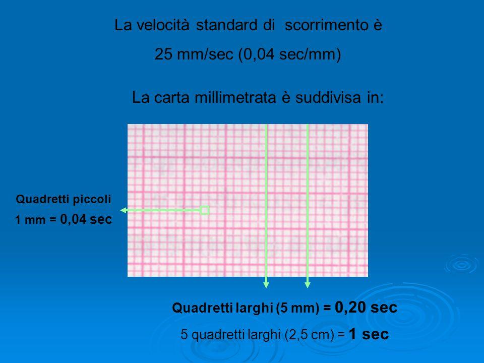 La velocità standard di scorrimento è 25 mm/sec (0,04 sec/mm) La carta millimetrata è suddivisa in: Quadretti piccoli 1 mm = 0,04 sec Quadretti larghi (5 mm) = 0,20 sec 5 quadretti larghi (2,5 cm) = 1 sec