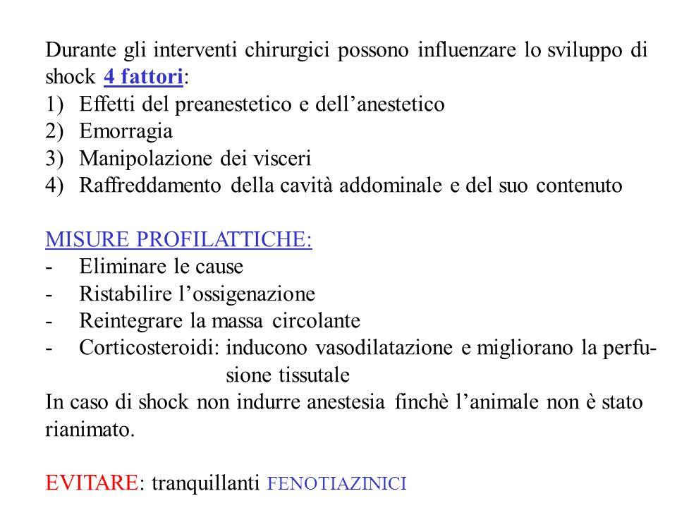 Durante gli interventi chirurgici possono influenzare lo sviluppo di shock 4 fattori: 1)Effetti del preanestetico e dellanestetico 2)Emorragia 3)Manipolazione dei visceri 4)Raffreddamento della cavità addominale e del suo contenuto MISURE PROFILATTICHE: -Eliminare le cause -Ristabilire lossigenazione -Reintegrare la massa circolante -Corticosteroidi: inducono vasodilatazione e migliorano la perfu- sione tissutale In caso di shock non indurre anestesia finchè lanimale non è stato rianimato.