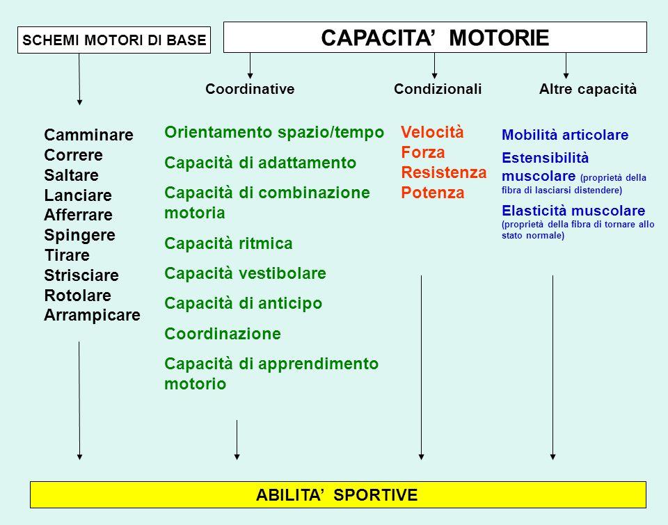CAPACITA MOTORIE SCHEMI MOTORI DI BASE Coordinative CondizionaliAltre capacità Velocità Forza Resistenza Potenza Mobilità articolare Estensibilità mus