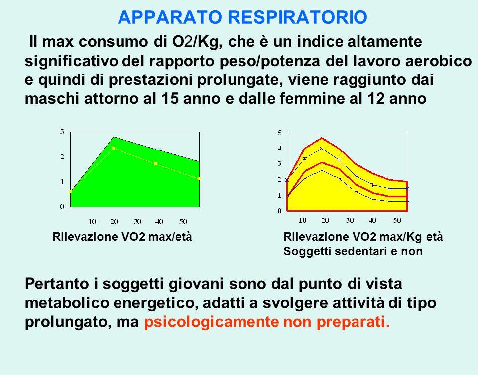 APPARATO RESPIRATORIO Il max consumo di O2/Kg, che è un indice altamente significativo del rapporto peso/potenza del lavoro aerobico e quindi di prest