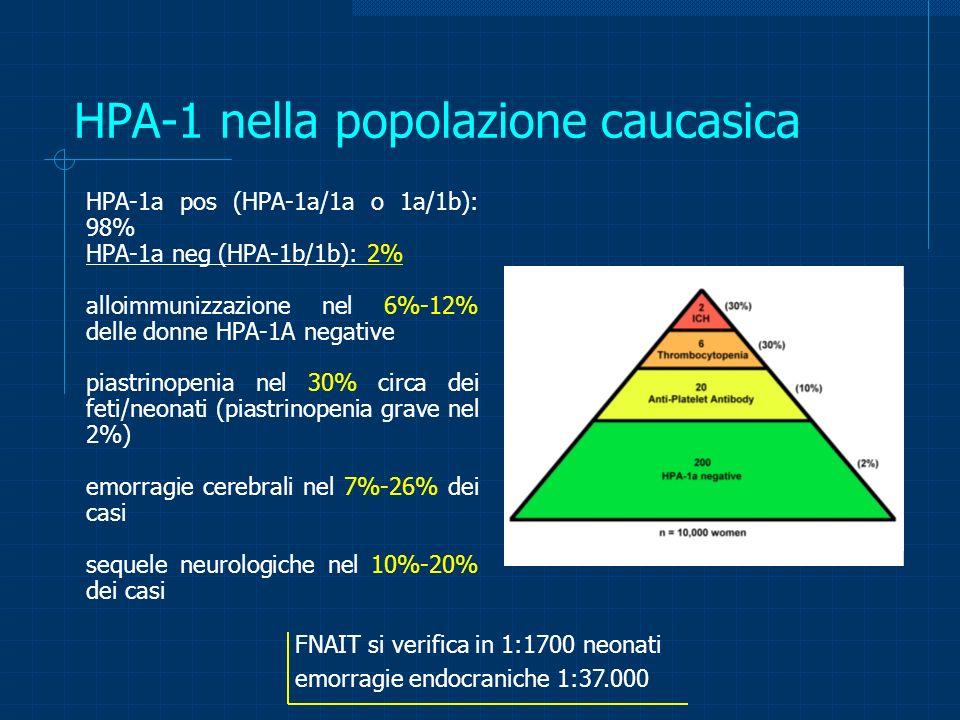 HPA-1 nella popolazione caucasica HPA-1a pos (HPA-1a/1a o 1a/1b): 98% HPA-1a neg (HPA-1b/1b): 2% alloimmunizzazione nel 6%-12% delle donne HPA-1A nega