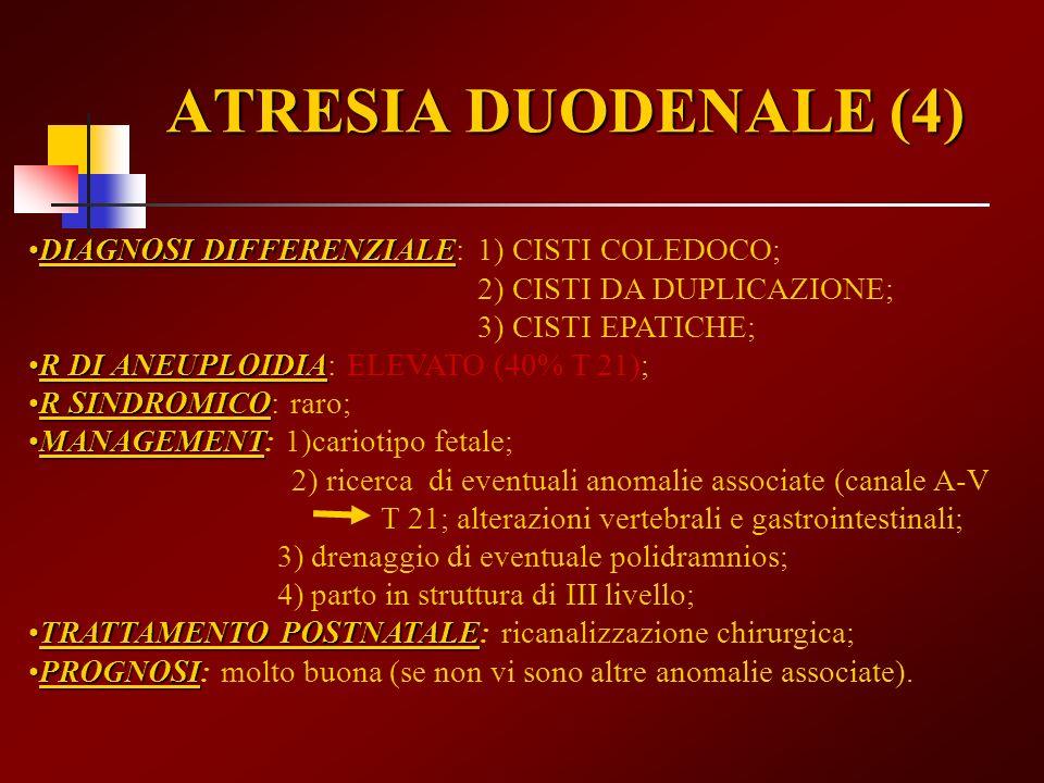 ATRESIA DUODENALE (4) DIAGNOSI DIFFERENZIALEDIAGNOSI DIFFERENZIALE: 1) CISTI COLEDOCO; 2) CISTI DA DUPLICAZIONE; 3) CISTI EPATICHE; R DI ANEUPLOIDIAR