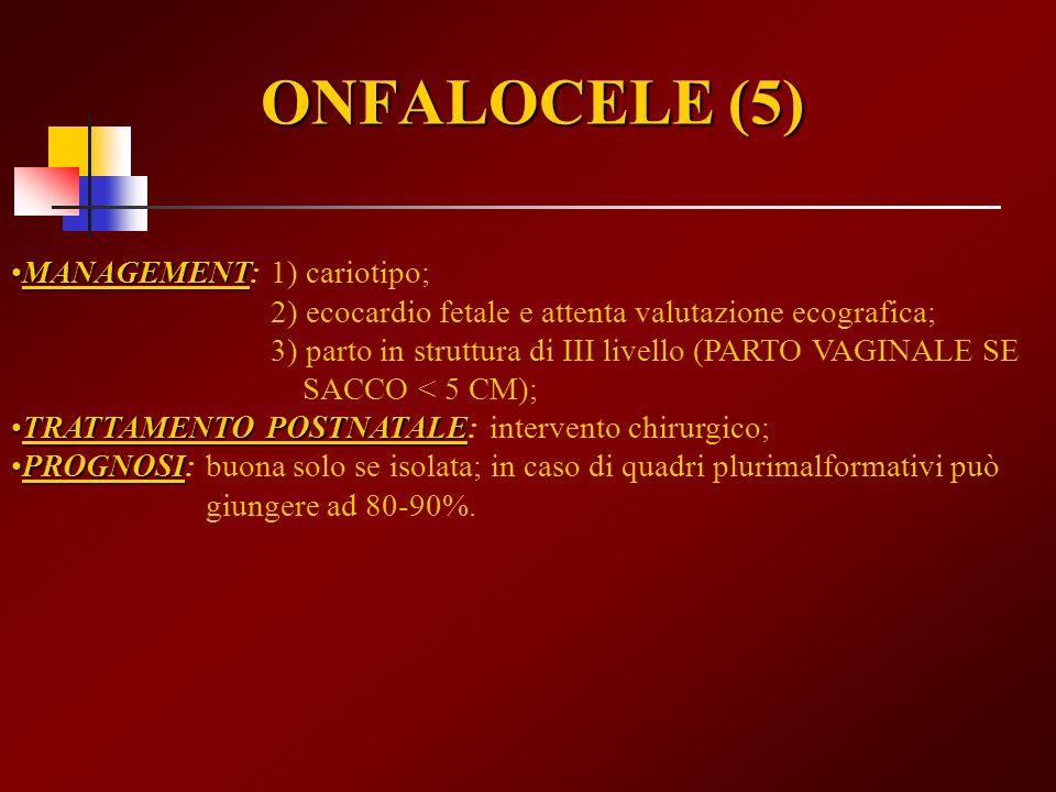 ONFALOCELE (5) MANAGEMENTMANAGEMENT: 1) cariotipo; 2) ecocardio fetale e attenta valutazione ecografica; 3) parto in struttura di III livello (PARTO V