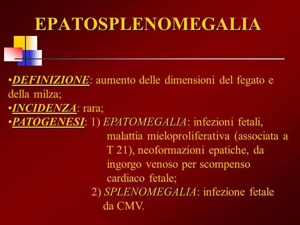 EPATOSPLENOMEGALIA DEFINIZIONEDEFINIZIONE: aumento delle dimensioni del fegato e della milza; INCIDENZAINCIDENZA: rara; PATOGENESIEPATOMEGALIAPATOGENE