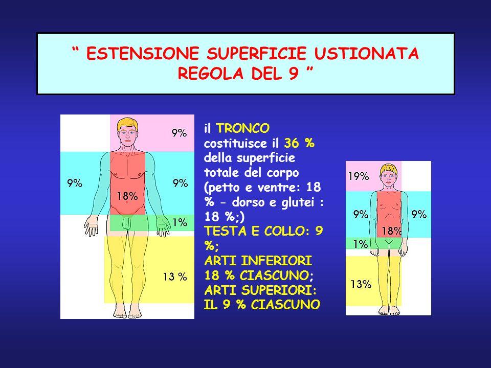 ESTENSIONE SUPERFICIE USTIONATA REGOLA DEL 9 il TRONCO costituisce il 36 % della superficie totale del corpo (petto e ventre: 18 % - dorso e glutei :