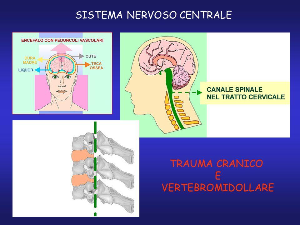 SISTEMA NERVOSO CENTRALE TRAUMA CRANICO E VERTEBROMIDOLLARE