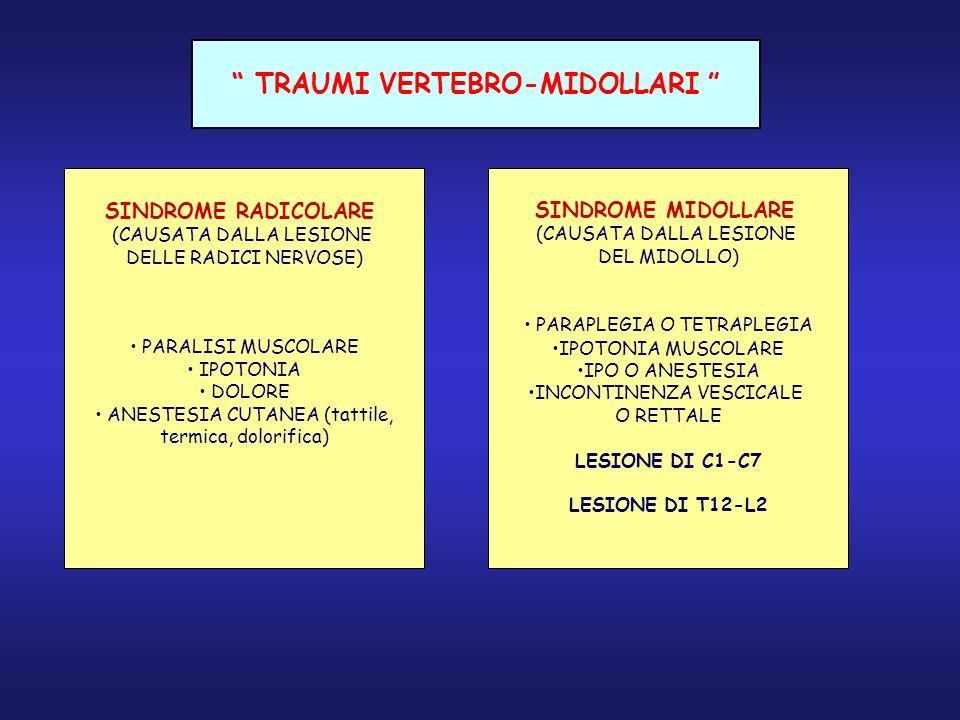 TRAUMI VERTEBRO-MIDOLLARI SINDROME RADICOLARE (CAUSATA DALLA LESIONE DELLE RADICI NERVOSE) PARALISI MUSCOLARE IPOTONIA DOLORE ANESTESIA CUTANEA (tatti