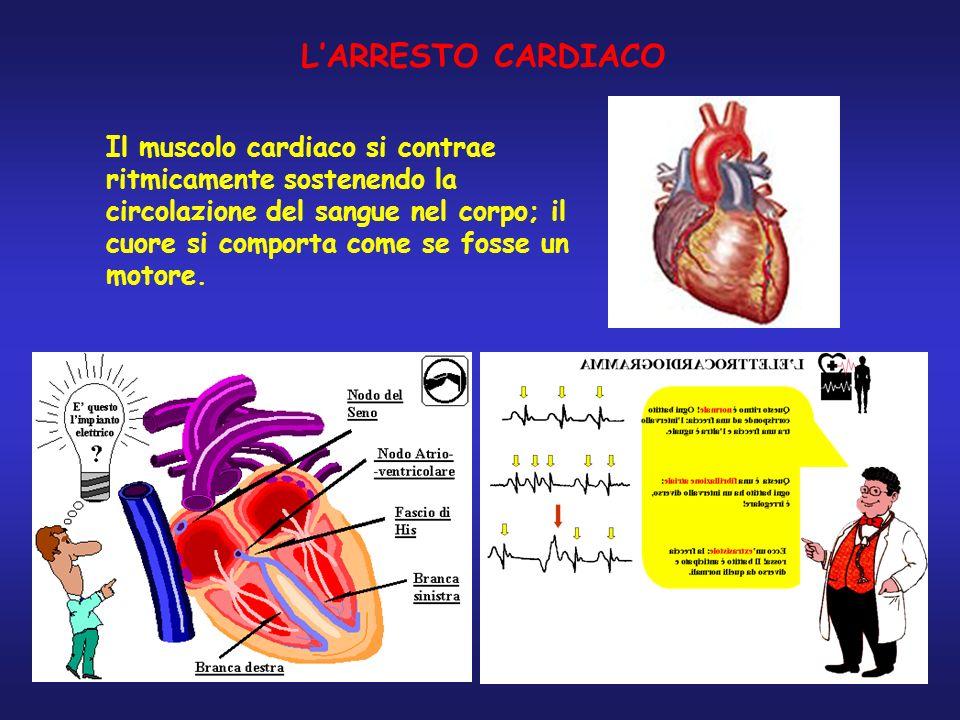 LARRESTO CARDIACO Il muscolo cardiaco si contrae ritmicamente sostenendo la circolazione del sangue nel corpo; il cuore si comporta come se fosse un m