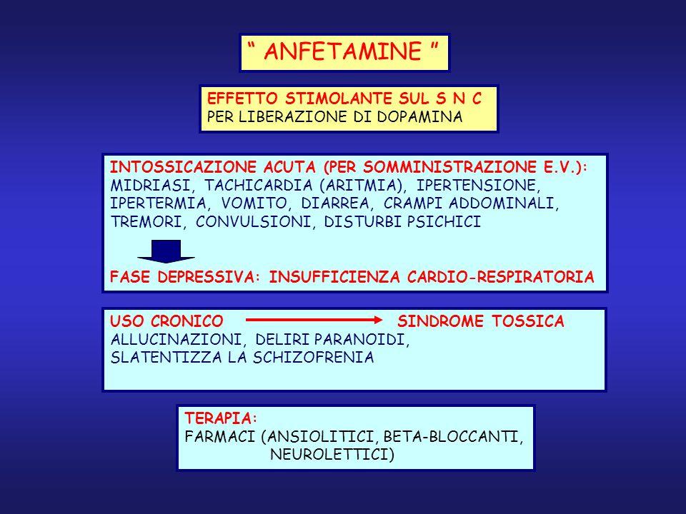 ANFETAMINE EFFETTO STIMOLANTE SUL S N C PER LIBERAZIONE DI DOPAMINA INTOSSICAZIONE ACUTA (PER SOMMINISTRAZIONE E.V.): MIDRIASI, TACHICARDIA (ARITMIA),