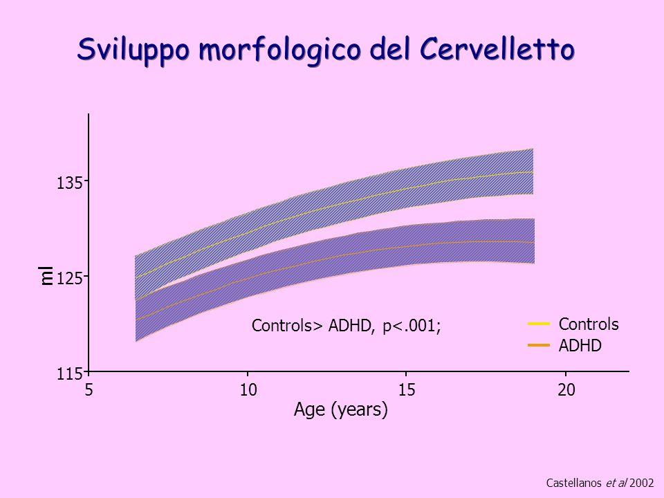 Sviluppo morfologico del Cervelletto 115 125 135 5101520 Age (years) ml Controls ADHD Controls> ADHD, p<.001; Castellanos et al 2002