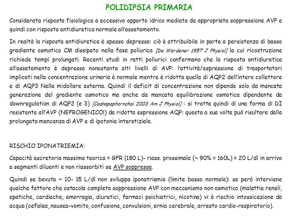 POLIDIPSIA PRIMARIA Considerata risposta fisiologica a eccessivo apporto idrico mediata da appropriata soppressione AVP e quindi con risposta antidiur