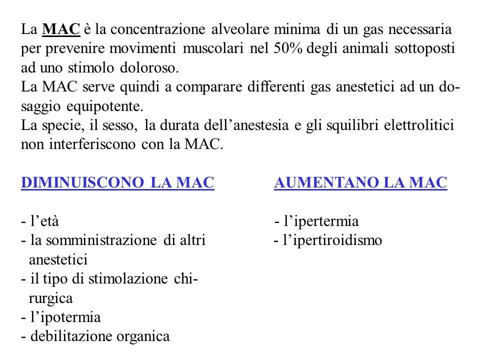 La MAC è la concentrazione alveolare minima di un gas necessaria per prevenire movimenti muscolari nel 50% degli animali sottoposti ad uno stimolo dol