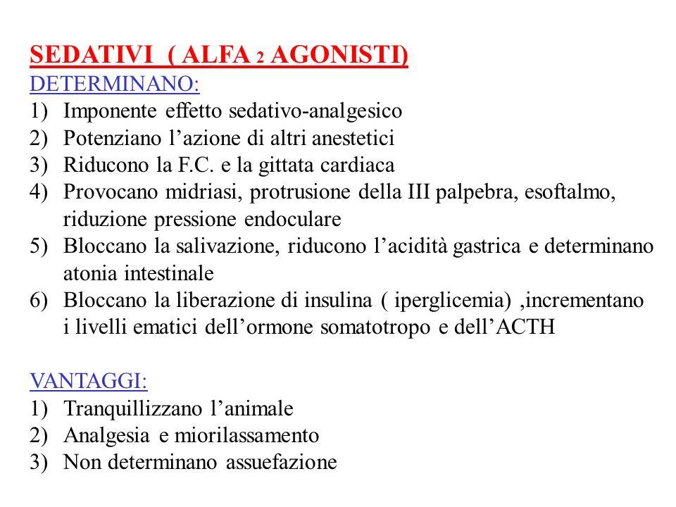 SEDATIVI ( ALFA 2 AGONISTI) DETERMINANO: 1)Imponente effetto sedativo-analgesico 2)Potenziano lazione di altri anestetici 3)Riducono la F.C. e la gitt