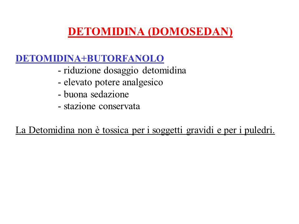 DETOMIDINA (DOMOSEDAN) DETOMIDINA+BUTORFANOLO - riduzione dosaggio detomidina - elevato potere analgesico - buona sedazione - stazione conservata La D