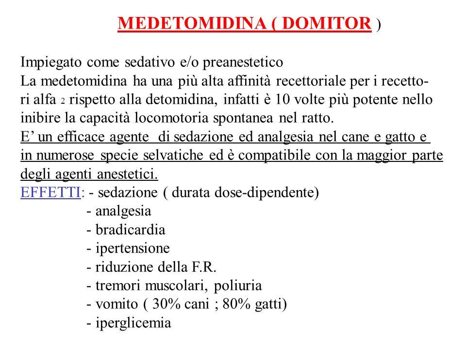 MEDETOMIDINA ( DOMITOR ) Impiegato come sedativo e/o preanestetico La medetomidina ha una più alta affinità recettoriale per i recetto- ri alfa 2 risp