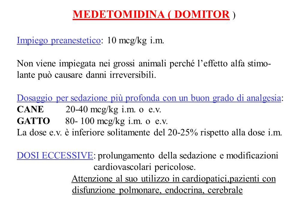 MEDETOMIDINA ( DOMITOR ) Impiego preanestetico: 10 mcg/kg i.m. Non viene impiegata nei grossi animali perché leffetto alfa stimo- lante può causare da