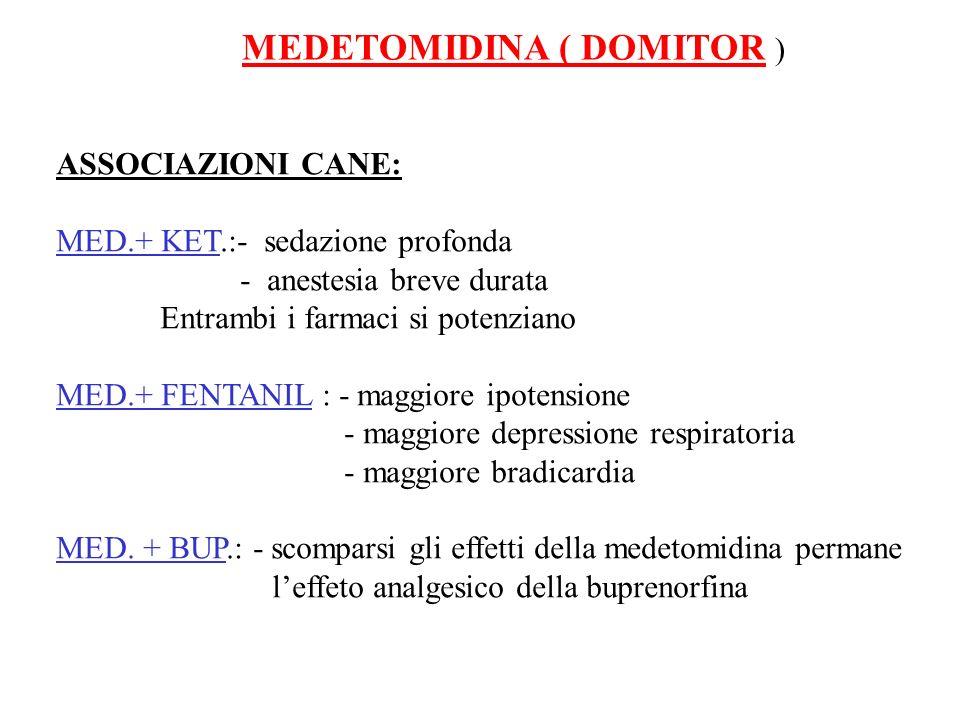 MEDETOMIDINA ( DOMITOR ) ASSOCIAZIONI CANE: MED.+ KET.:- sedazione profonda - anestesia breve durata Entrambi i farmaci si potenziano MED.+ FENTANIL :