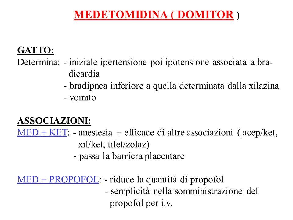 MEDETOMIDINA ( DOMITOR ) GATTO: Determina: - iniziale ipertensione poi ipotensione associata a bra- dicardia - bradipnea inferiore a quella determinat