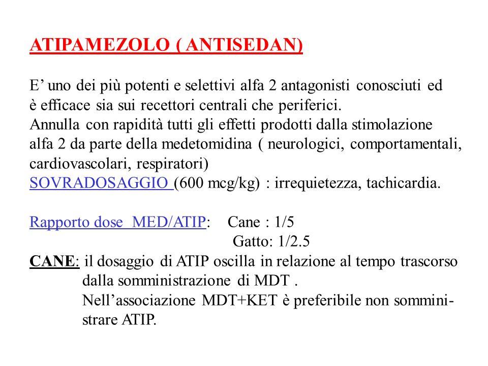 ATIPAMEZOLO ( ANTISEDAN) E uno dei più potenti e selettivi alfa 2 antagonisti conosciuti ed è efficace sia sui recettori centrali che periferici. Annu
