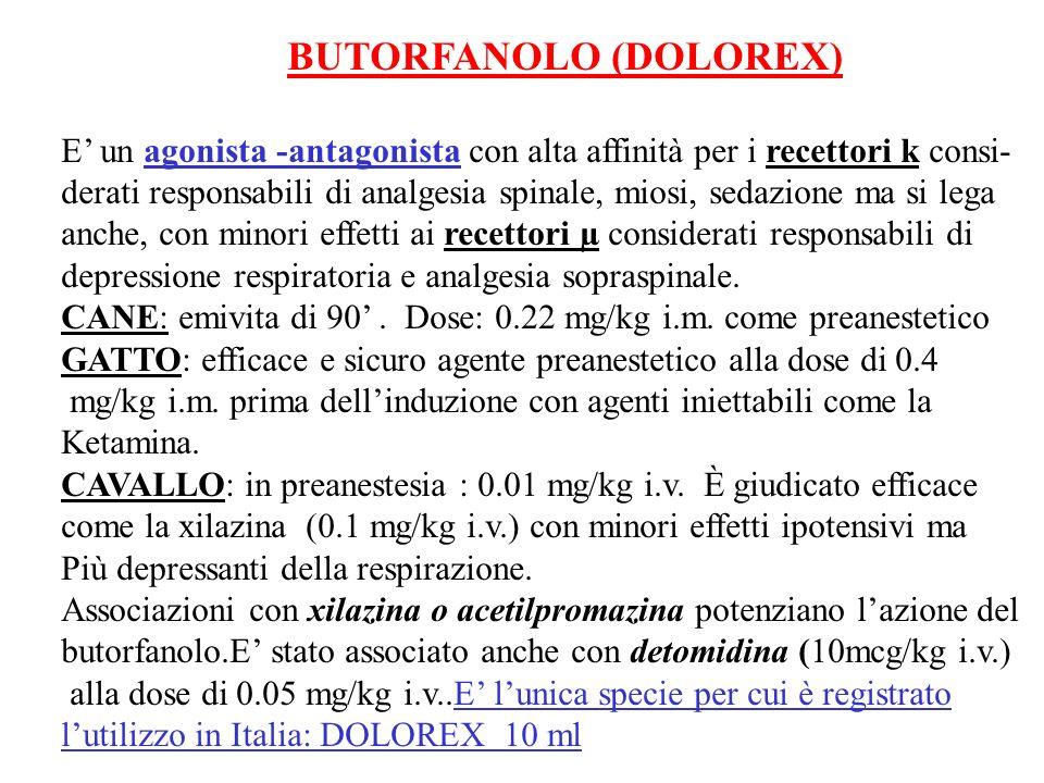 BUTORFANOLO (DOLOREX) E un agonista -antagonista con alta affinità per i recettori k consi- derati responsabili di analgesia spinale, miosi, sedazione