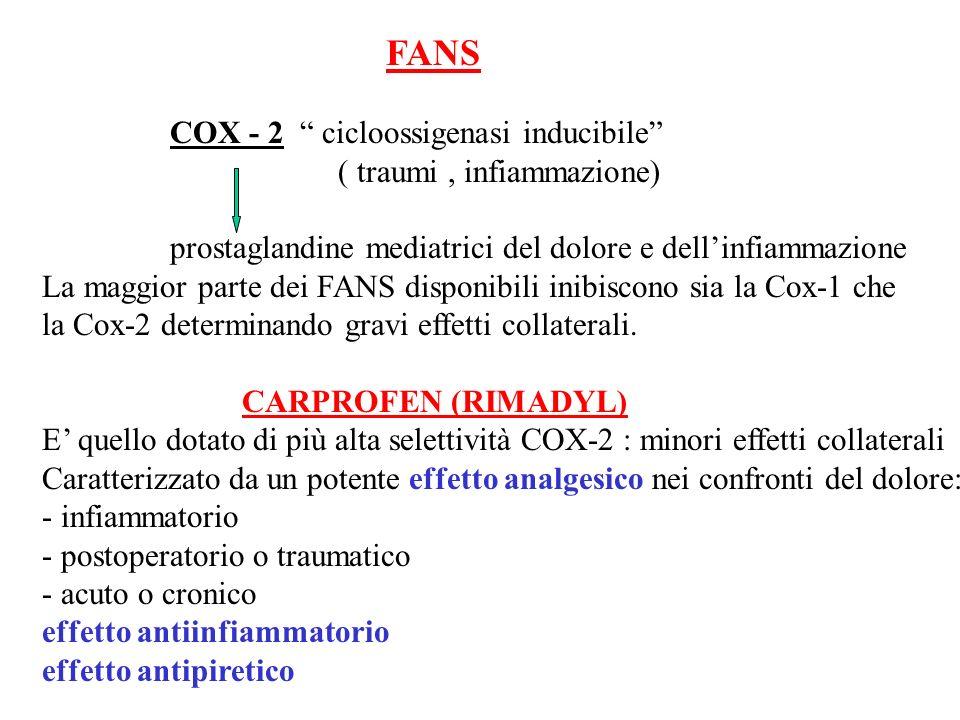 FANS COX - 2 cicloossigenasi inducibile ( traumi, infiammazione) prostaglandine mediatrici del dolore e dellinfiammazione La maggior parte dei FANS di