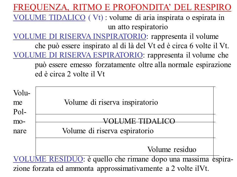 FREQUENZA, RITMO E PROFONDITA DEL RESPIRO VOLUME TIDALICO ( Vt) : volume di aria inspirata o espirata in un atto respiratorio VOLUME DI RISERVA INSPIR