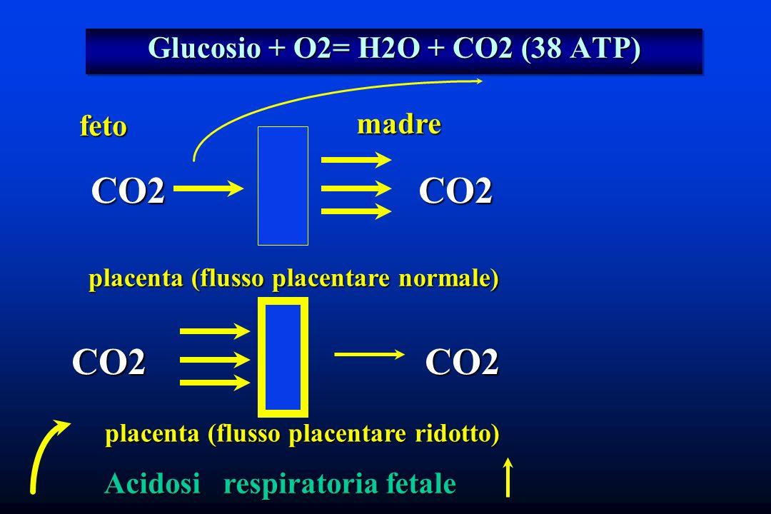 Glucosio + O2= H2O + CO2 (38 ATP) CO2 placenta (flusso placentare ridotto) feto madre CO2 Acidosi respiratoria fetale placenta (flusso placentare norm