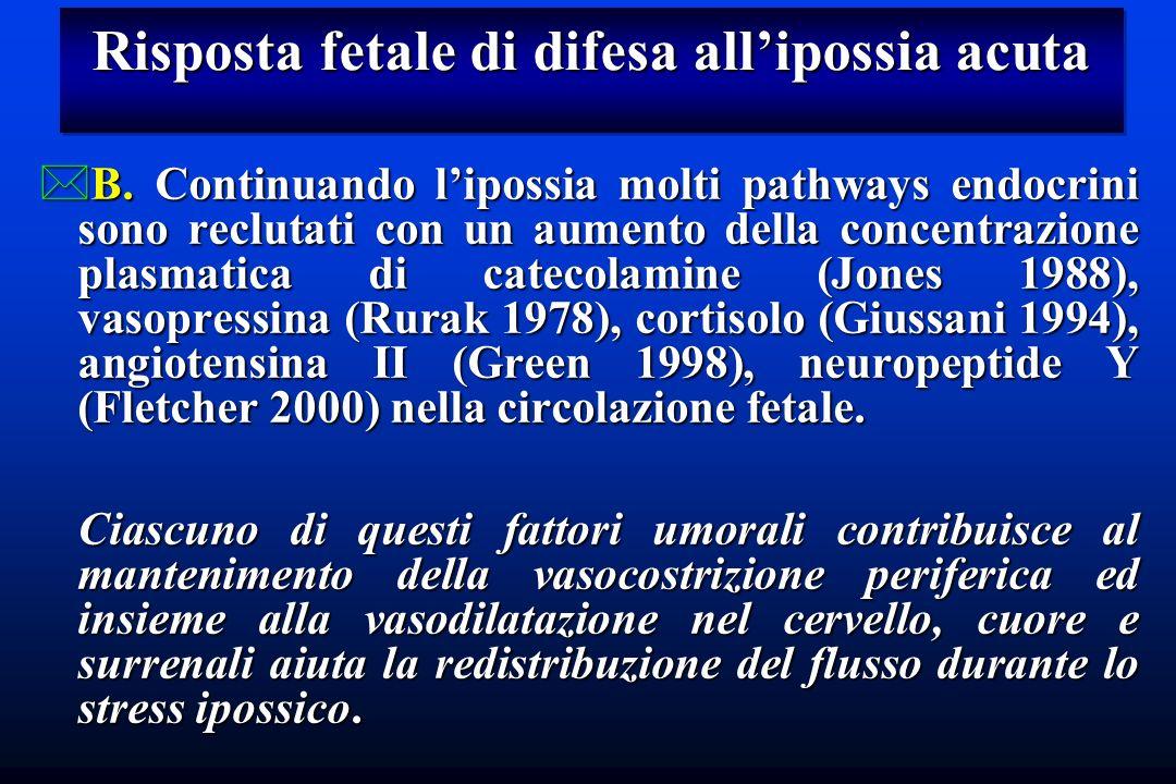 Risposta fetale di difesa allipossia acuta *B. Continuando lipossia molti pathways endocrini sono reclutati con un aumento della concentrazione plasma