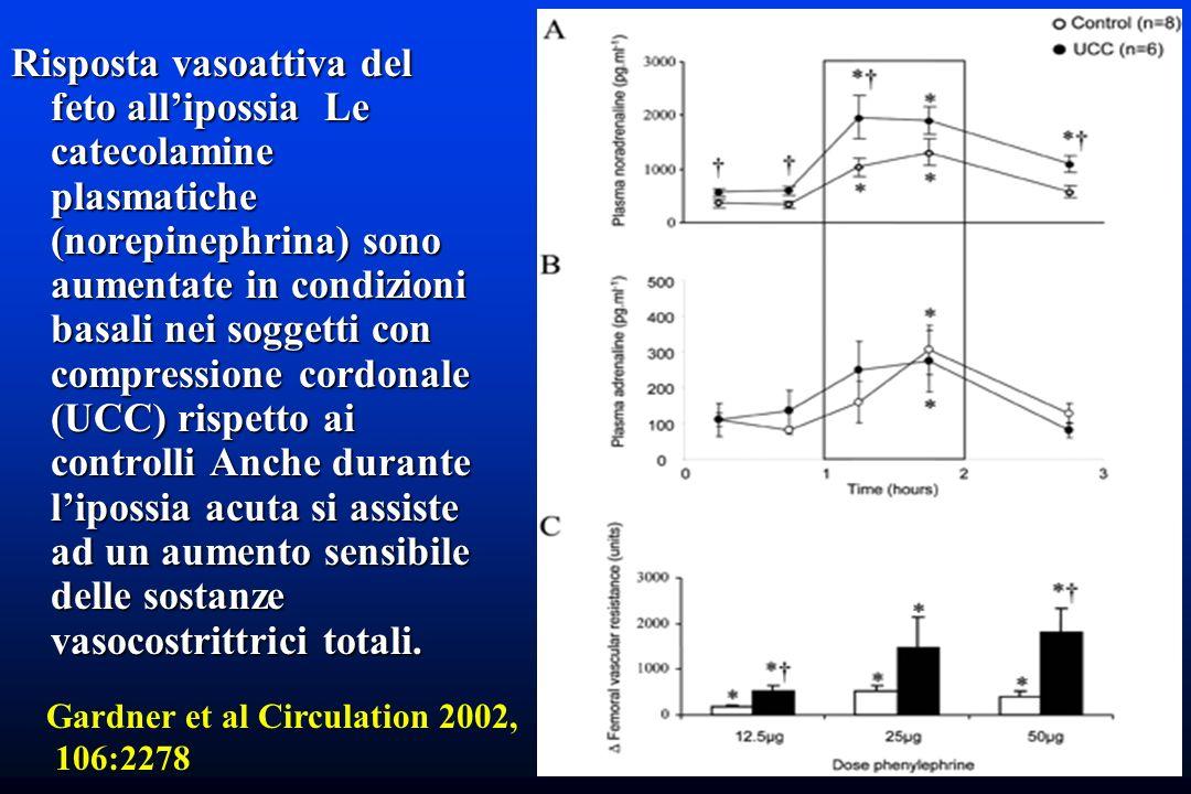 Risposta vasoattiva del feto allipossia Le catecolamine plasmatiche (norepinephrina) sono aumentate in condizioni basali nei soggetti con compressione