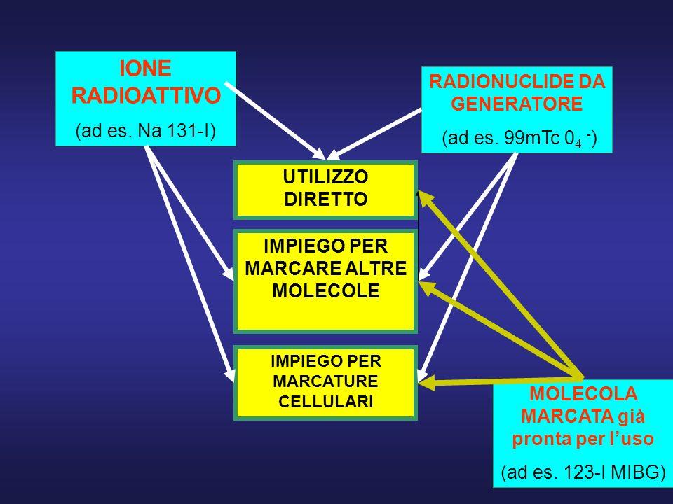 IONE RADIOATTIVO (ad es. Na 131-I) MOLECOLA MARCATA già pronta per luso (ad es. 123-I MIBG) RADIONUCLIDE DA GENERATORE (ad es. 99mTc 0 4 - ) UTILIZZO