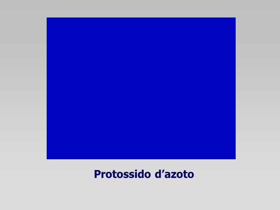 Protossido dazoto
