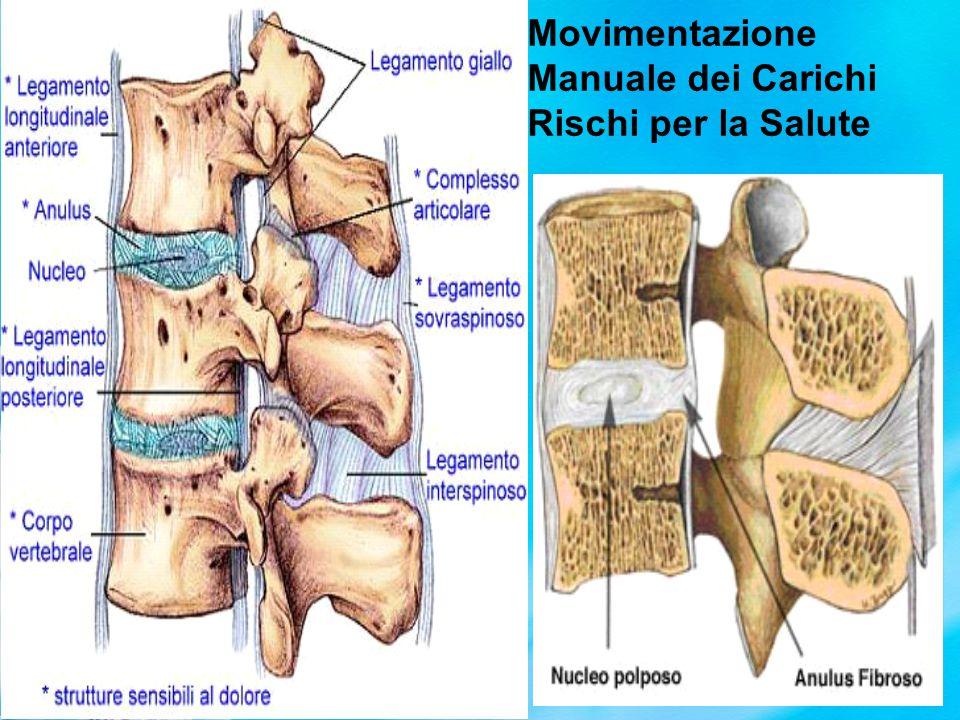 Cartilagine Limitante del Piatto Vertebrale Rischi: Microfratture Fenomeni degenerativi