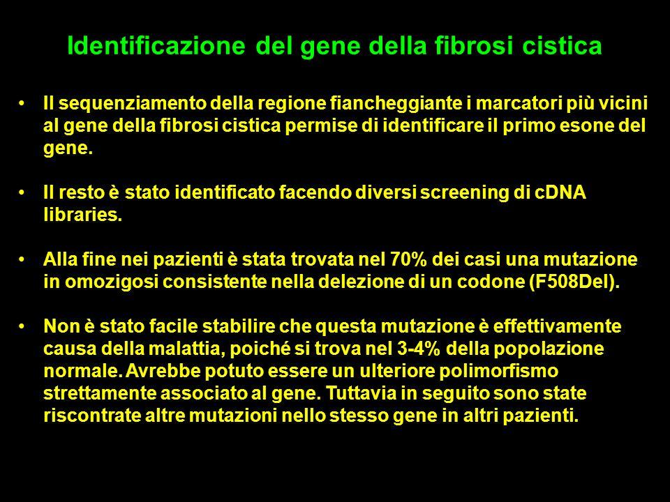 Identificazione del gene della fibrosi cistica Il sequenziamento della regione fiancheggiante i marcatori più vicini al gene della fibrosi cistica permise di identificare il primo esone del gene.