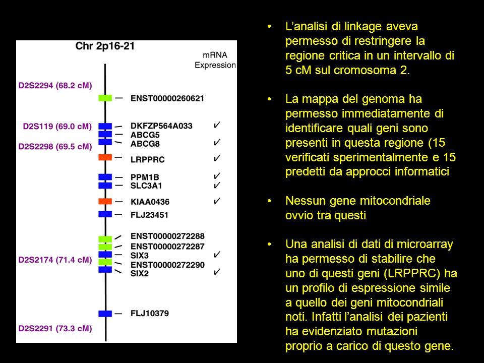 Lanalisi di linkage aveva permesso di restringere la regione critica in un intervallo di 5 cM sul cromosoma 2.
