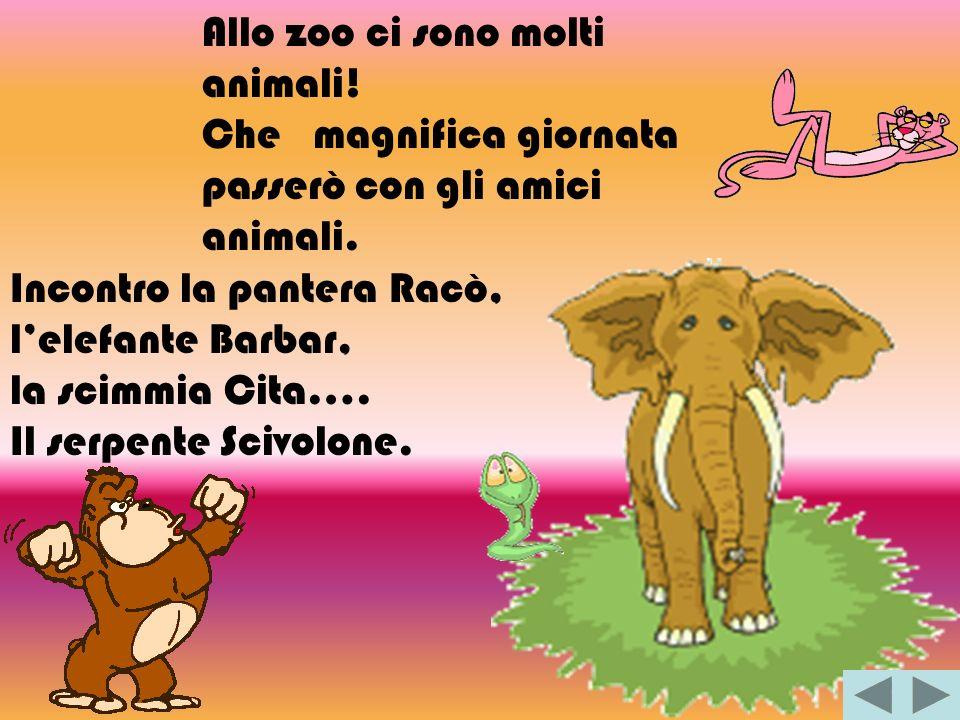Allo zoo ci sono molti animali! Che magnifica giornata passerò con gli amici animali. Incontro la pantera Racò, lelefante Barbar, la scimmia Cita…. Il