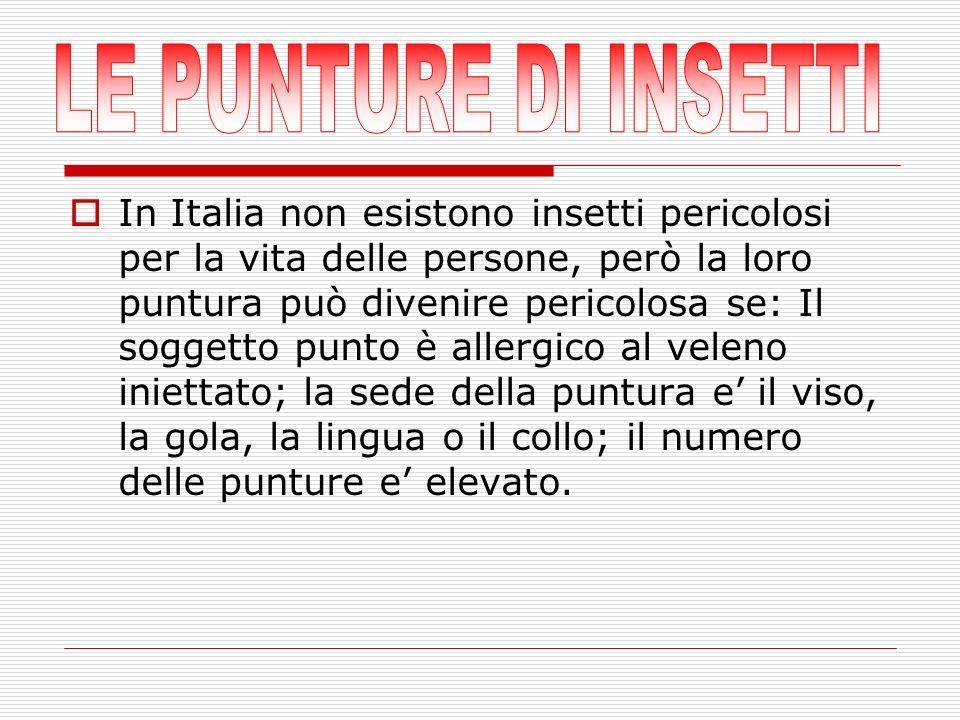 In Italia non esistono insetti pericolosi per la vita delle persone, però la loro puntura può divenire pericolosa se: Il soggetto punto è allergico al