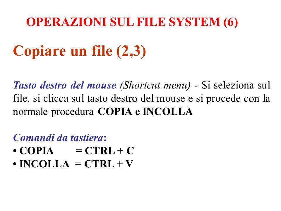 Copiare un file (2,3) Tasto destro del mouse (Shortcut menu) - Si seleziona sul file, si clicca sul tasto destro del mouse e si procede con la normale