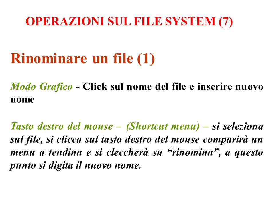 Rinominare un file (1) Modo Grafico - Click sul nome del file e inserire nuovo nome Tasto destro del mouse – (Shortcut menu) – si seleziona sul file,