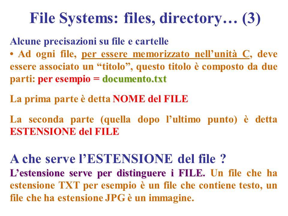 Alcune precisazioni su file e cartelle documento.txt Ad ogni file, per essere memorizzato nellunità C, deve essere associato un titolo, questo titolo