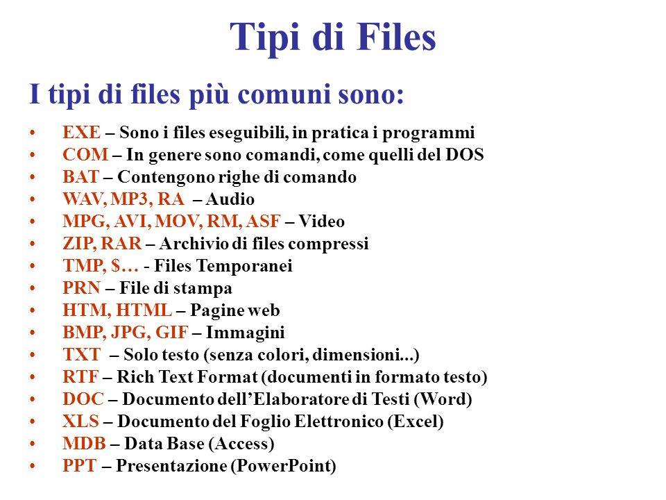 Tipi di Files I tipi di files più comuni sono: EXE – Sono i files eseguibili, in pratica i programmi COM – In genere sono comandi, come quelli del DOS