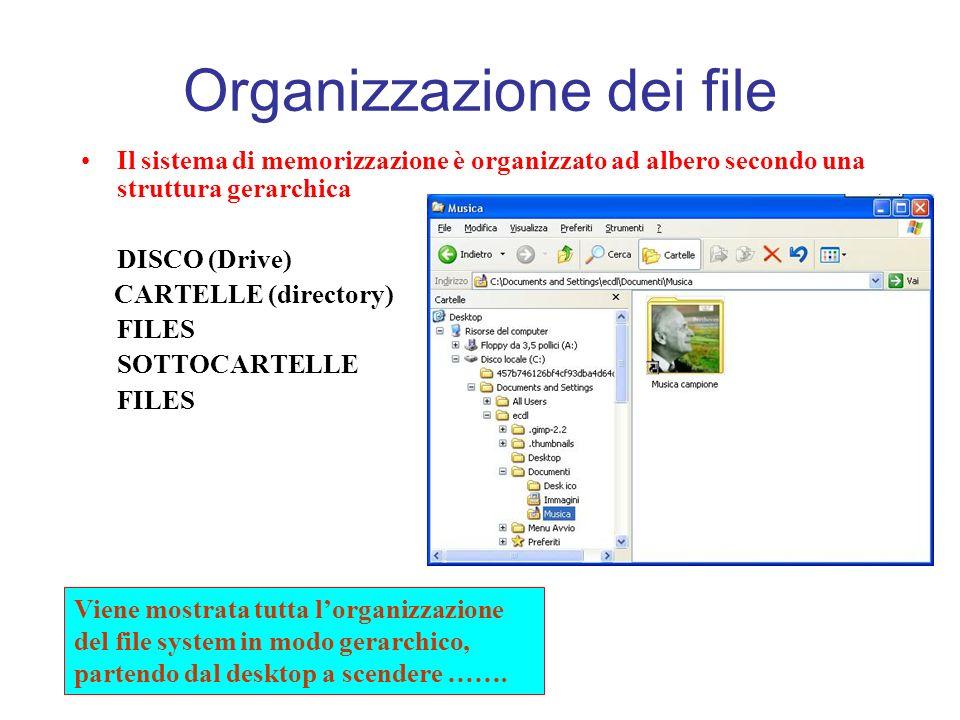Organizzazione dei file Il sistema di memorizzazione è organizzato ad albero secondo una struttura gerarchica DISCO (Drive) CARTELLE (directory) FILES