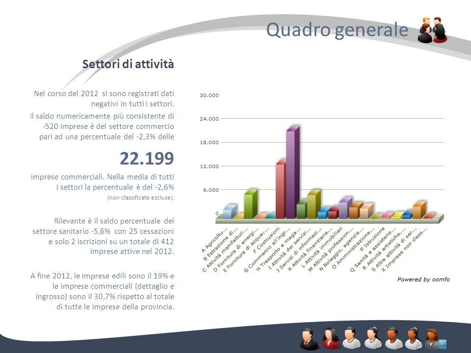 Settori di attività Quadro generale. Nel corso del 2012 si sono registrati dati negativi in tutti i settori. Il saldo numericamente più consistente di