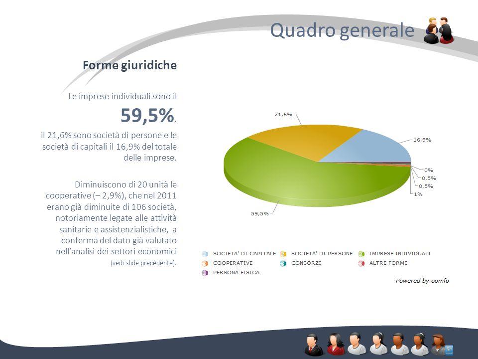 Forme giuridiche Quadro generale. Le imprese individuali sono il 59,5%, il 21,6% sono società di persone e le società di capitali il 16,9% del totale