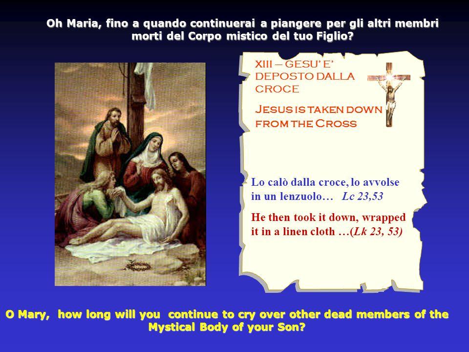 XIII – GESU E DEPOSTO DALLA CROCE Jesus is taken down from the Cross Oh Maria, fino a quando continuerai a piangere per gli altri membri morti del Corpo mistico del tuo Figlio.