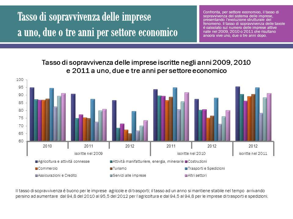 Confronta, per settore economico, il tasso di sopravvivenza del sistema delle imprese, presentando levoluzione strutturale del fenomeno.