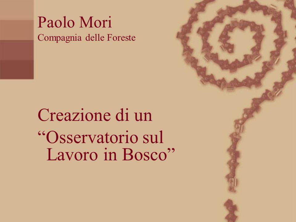 Creazione di un Paolo Mori Compagnia delle Foreste Osservatorio sul Lavoro in Bosco