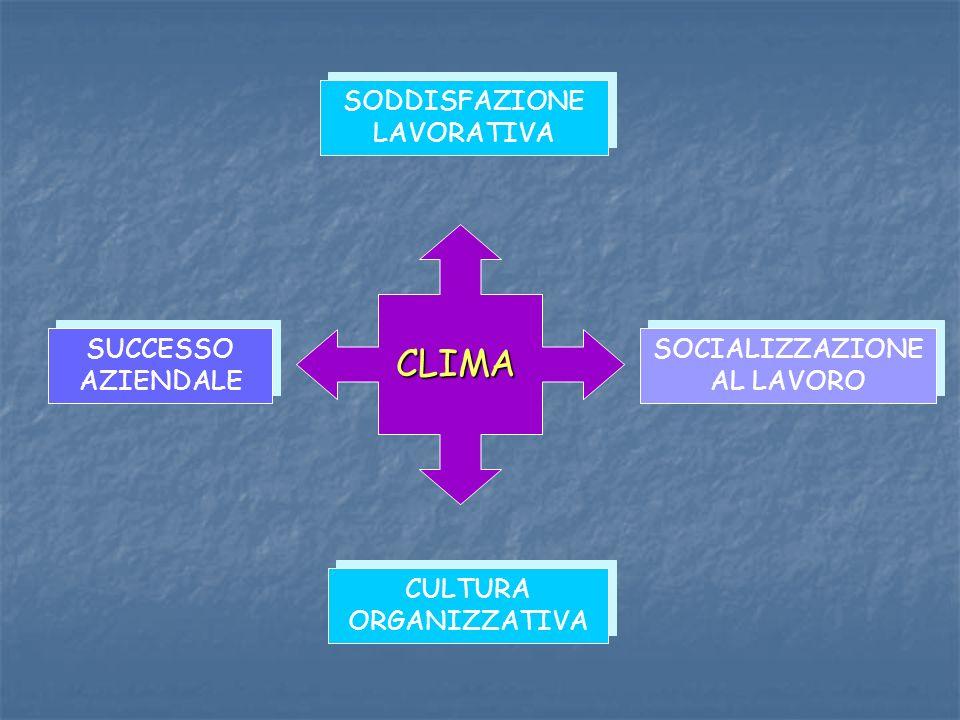 SUCCESSO AZIENDALE SOCIALIZZAZIONE AL LAVORO CULTURA ORGANIZZATIVA SODDISFAZIONE LAVORATIVA CLIMA