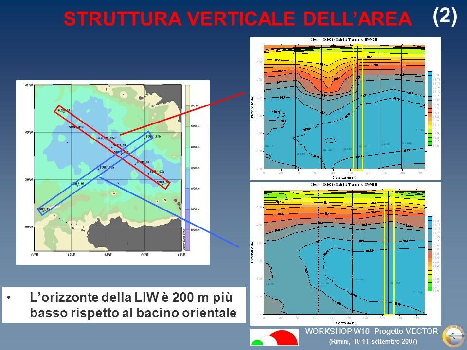 WORKSHOP W10 Progetto VECTOR (Rimini, 10-11 settembre 2007) STRUTTURA VERTICALE DELLAREA Lorizzonte della LIW è 200 m più basso rispetto al bacino orientale (2)