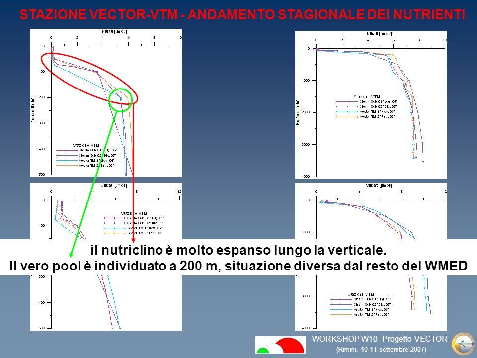 WORKSHOP W10 Progetto VECTOR (Rimini, 10-11 settembre 2007) Separazione al di sotto dei primi 50 m che dimostra la presenza di un mixed layer poco profondo per gran parte dellanno Per il momento abbiamo solo un profilo well mixed (feb 2007) ma anche in questo caso non vi è una completa omogeneità nella verticale Il dato dellossigeno è significativo perchè mostra un DOM quasi permanente STAZIONE VECTOR-VTM ANDAMENTO STAGIONALE OSSIGENO DISCIOLTO