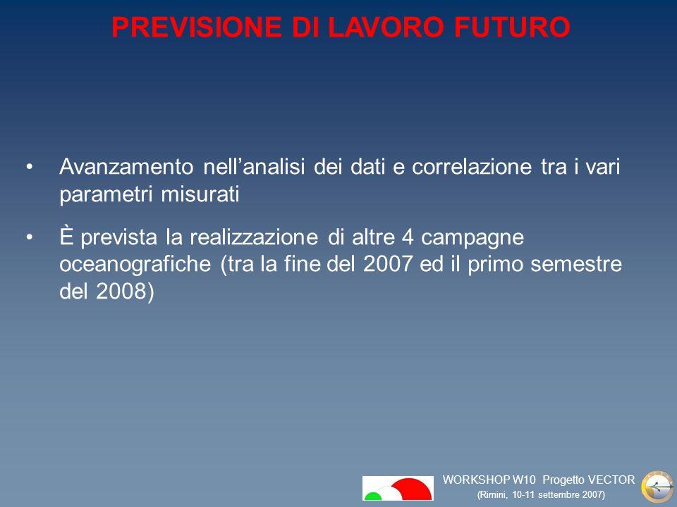 WORKSHOP W10 Progetto VECTOR (Rimini, 10-11 settembre 2007) Avanzamento nellanalisi dei dati e correlazione tra i vari parametri misurati È prevista la realizzazione di altre 4 campagne oceanografiche (tra la fine del 2007 ed il primo semestre del 2008) PREVISIONE DI LAVORO FUTURO